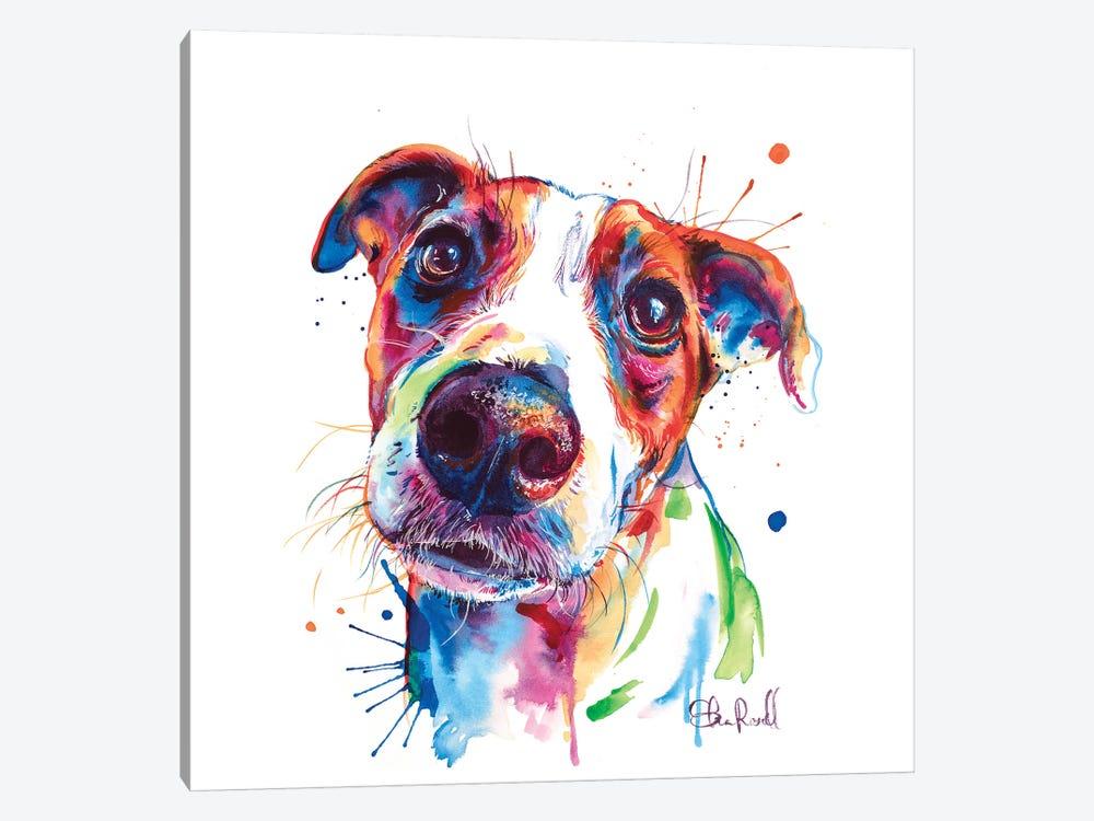 Jack Russel by Weekday Best 1-piece Canvas Art