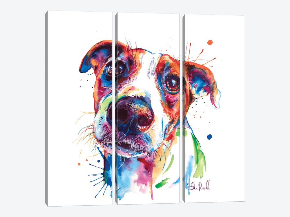 Jack Russel by Weekday Best 3-piece Canvas Wall Art
