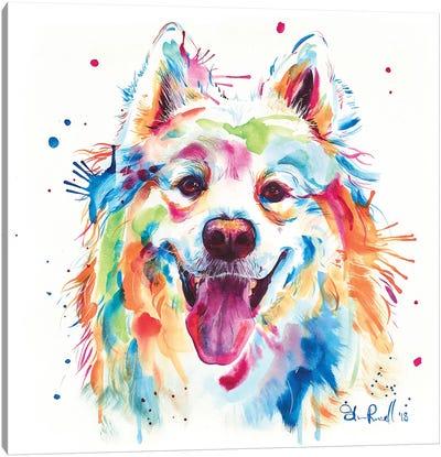 Samoyed Canvas Art Print