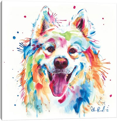 Samoyed Canvas Art Print