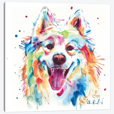 Samoyed Canvas Print #SNA45} by Weekday Best Canvas Artwork