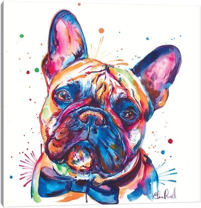 Bowtie Frenchie Canvas Art Print