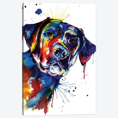 Black Lab Canvas Print #SNA4} by Weekday Best Canvas Wall Art