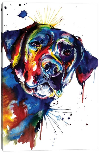 Black Lab Canvas Art Print
