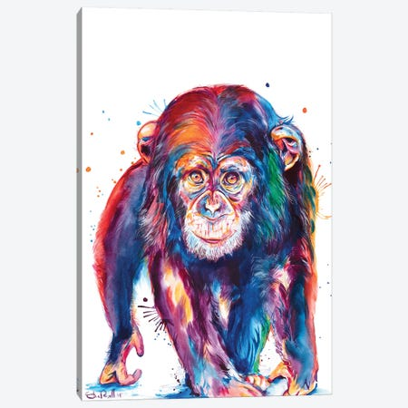 Chimp Canvas Print #SNA51} by Weekday Best Canvas Art