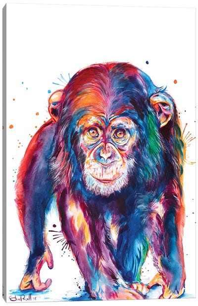 Chimp Canvas Art Print