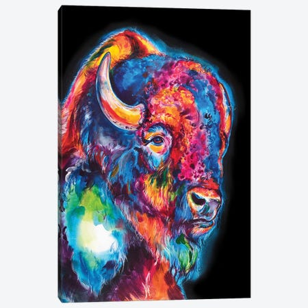 Buffalo On Black Canvas Print #SNA52} by Weekday Best Canvas Art