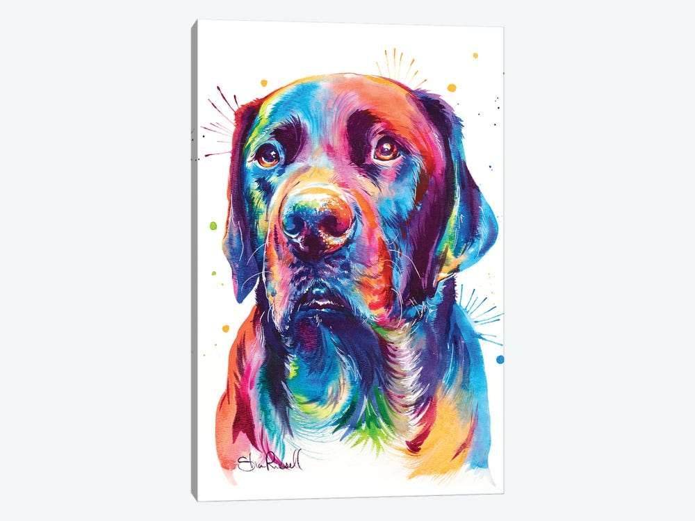 Chocolate Lab 1-piece Canvas Wall Art