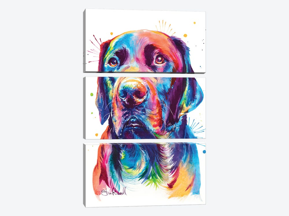 Chocolate Lab 3-piece Canvas Artwork