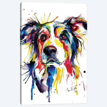 Border Collie Canvas Print #SNA5} by Weekday Best Canvas Wall Art