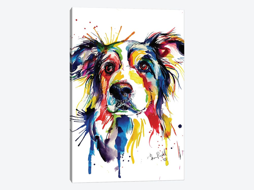 Border Collie by Weekday Best 1-piece Canvas Art