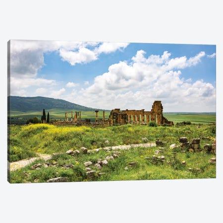 Volubilis, Morocco. Basilica and capitol Roman ruins, Volubilis Canvas Print #SND17} by Jolly Sienda Canvas Art