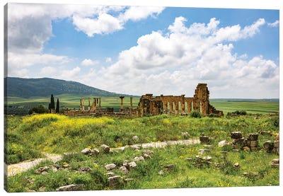 Volubilis, Morocco. Basilica and capitol Roman ruins, Volubilis Canvas Art Print
