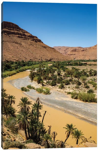 Ziz Valley, Morocco. Ziz Valley Gorge and palm trees Canvas Art Print