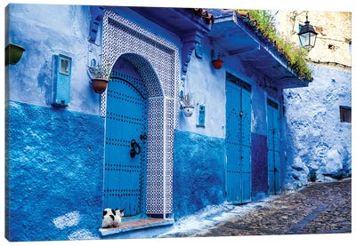 Chefchaouen, Morocco. Cat and blue door and buildings Canvas Art Print