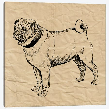 Pug Canvas Print #SNE9} by Sabine Berg Art Print