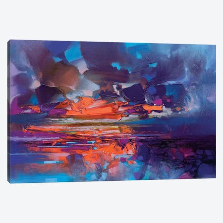 Compression Canvas Print #SNH100} by Scott Naismith Art Print