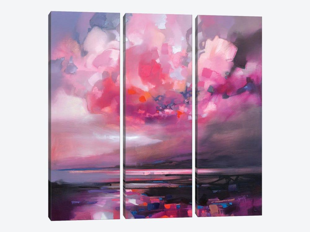 Dispersing Magenta by Scott Naismith 3-piece Canvas Art Print