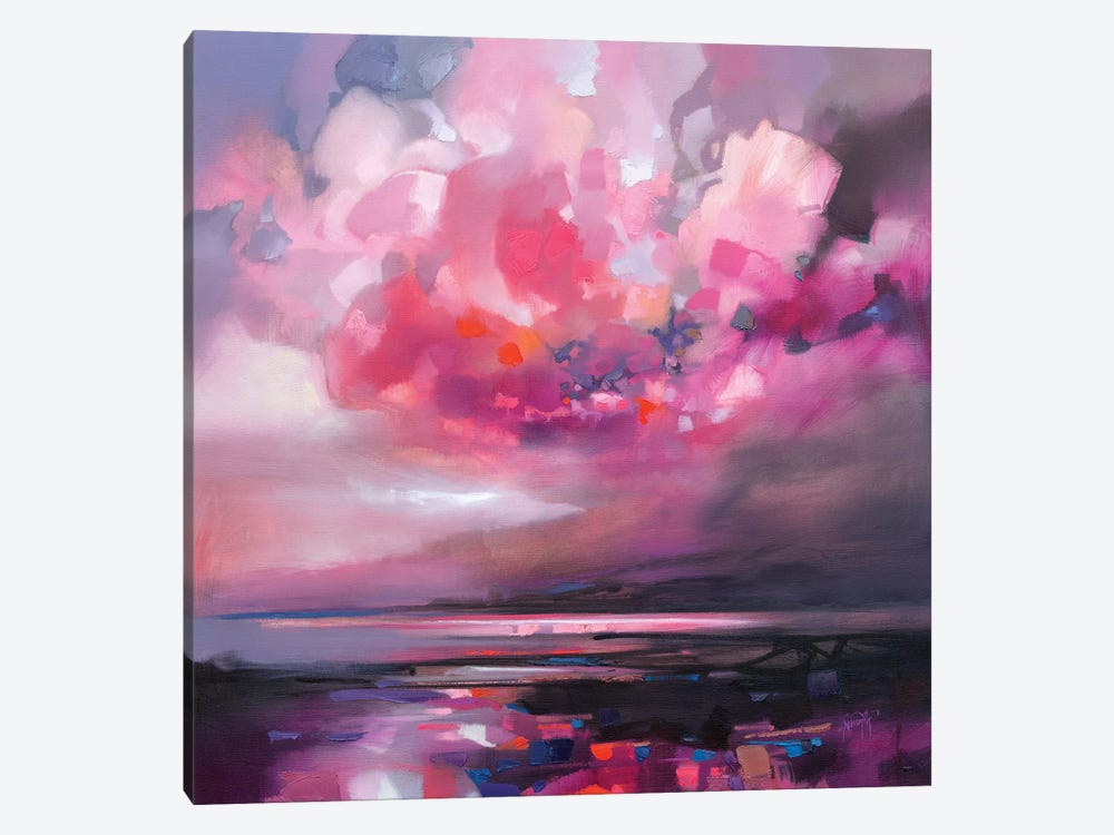 Dispersing Magenta by Scott Naismith 1-piece Canvas Art Print