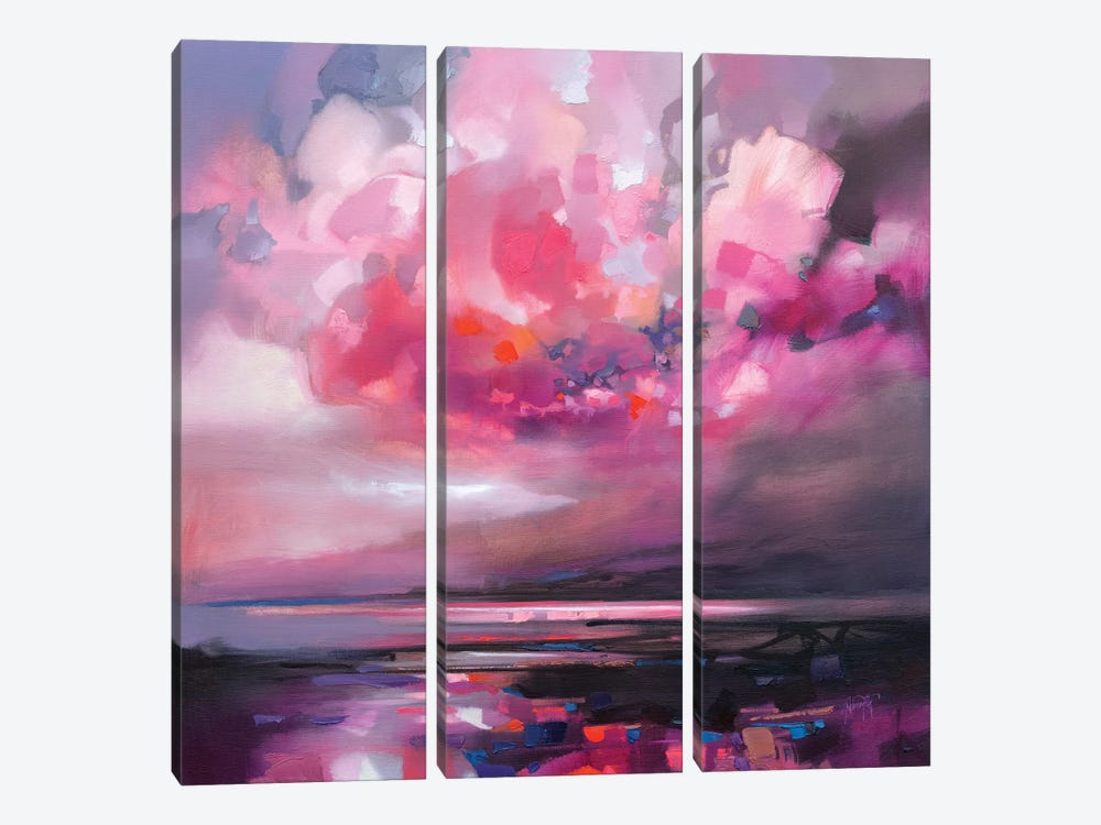 Dispersing Magenta by Scott Naismith 3-piece Canvas Art Print
