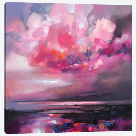 Dispersing Magenta Canvas Print #SNH101} by Scott Naismith Canvas Art Print