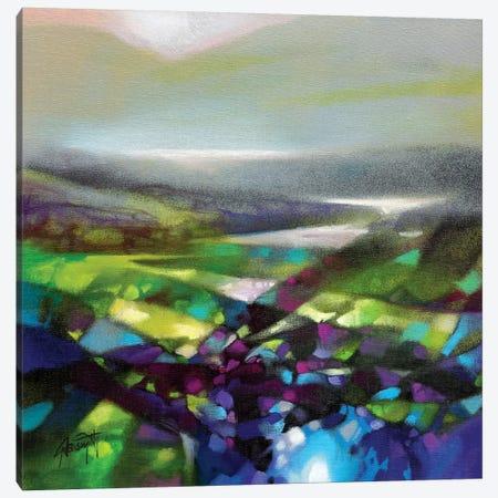 Displacement Greens Canvas Print #SNH102} by Scott Naismith Canvas Print