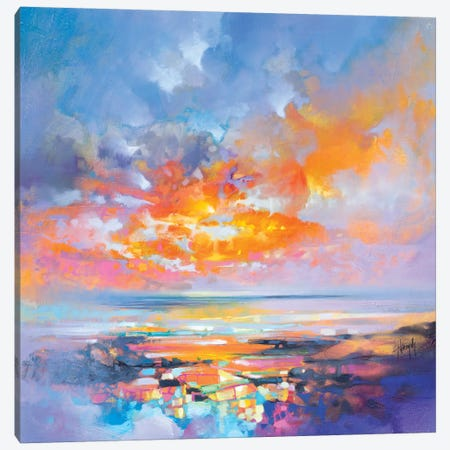 Hebridean Particles Canvas Print #SNH104} by Scott Naismith Canvas Artwork