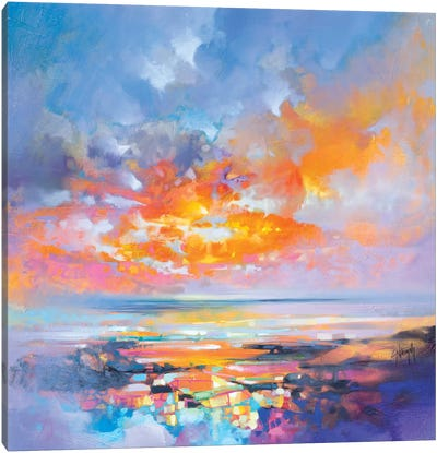 Hebridean Particles by Scott Naismith Canvas Art Print