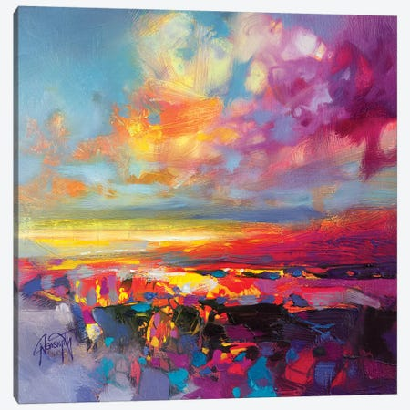 Luminance Study II Canvas Print #SNH109} by Scott Naismith Canvas Print