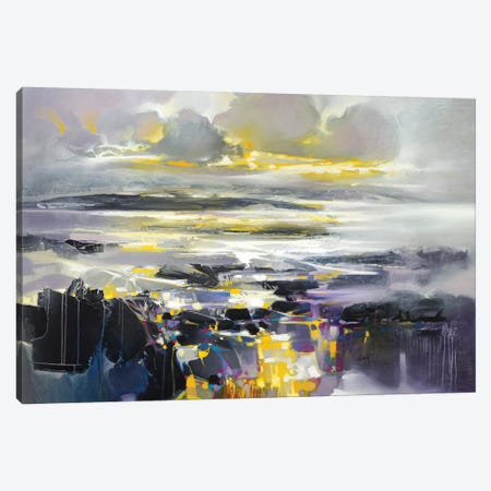 Matter III Canvas Print #SNH110} by Scott Naismith Canvas Wall Art