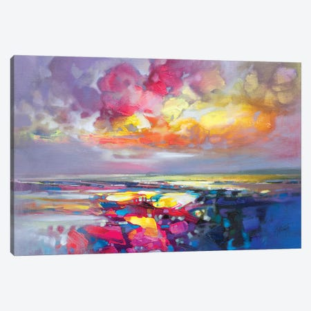 Primary Shore Canvas Print #SNH113} by Scott Naismith Canvas Art