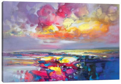 Primary Shore by Scott Naismith Canvas Art Print