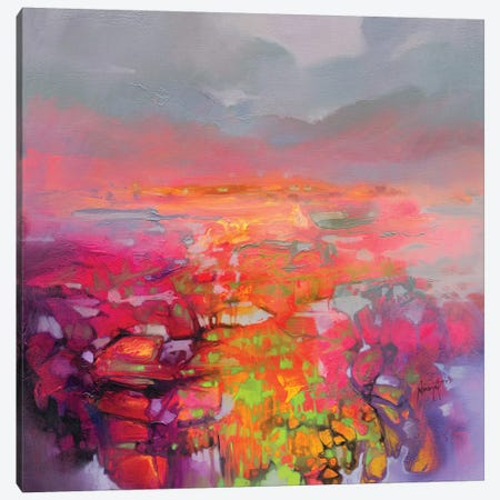 Quantum Entaglement Canvas Print #SNH115} by Scott Naismith Canvas Art Print