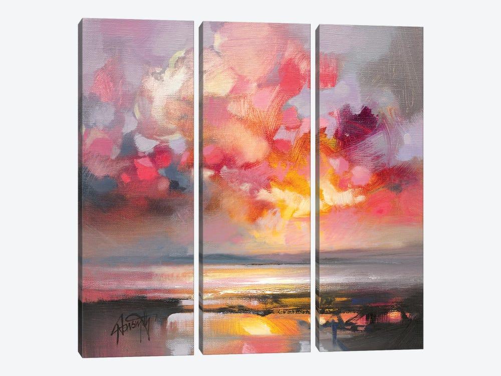Rose Cumulus Study I by Scott Naismith 3-piece Canvas Print