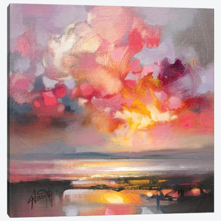 Rose Cumulus Study I Canvas Print #SNH118} by Scott Naismith Canvas Wall Art