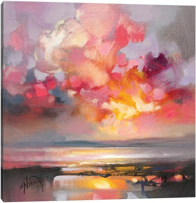 Rose Cumulus Study I Canvas Art Print