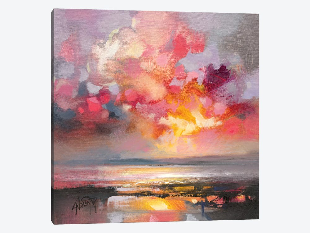 Rose Cumulus Study I by Scott Naismith 1-piece Art Print
