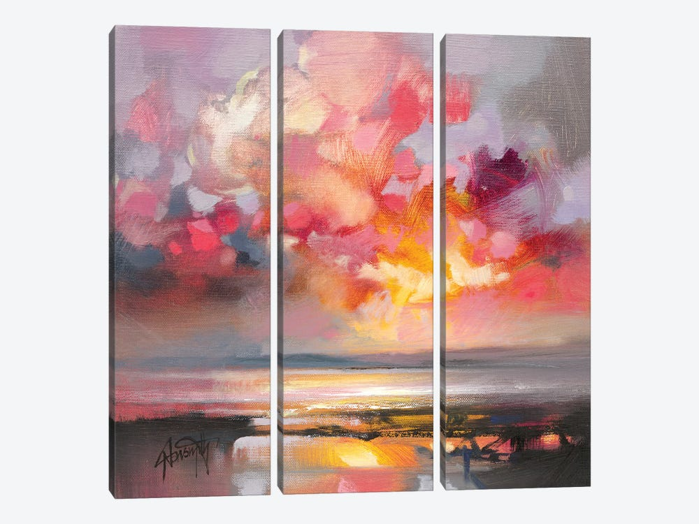 Rose Cumulus Study I by Scott Naismith 3-piece Canvas Print