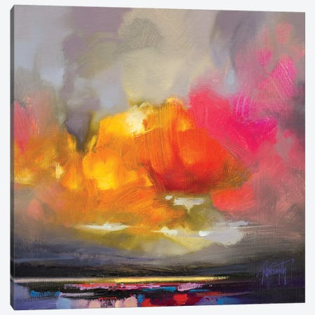 Rose Cumulus Study II Canvas Print #SNH119} by Scott Naismith Canvas Art