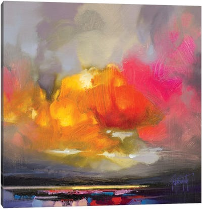 Rose Cumulus Study II Canvas Art Print