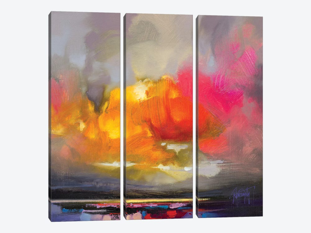 Rose Cumulus Study II by Scott Naismith 3-piece Canvas Art