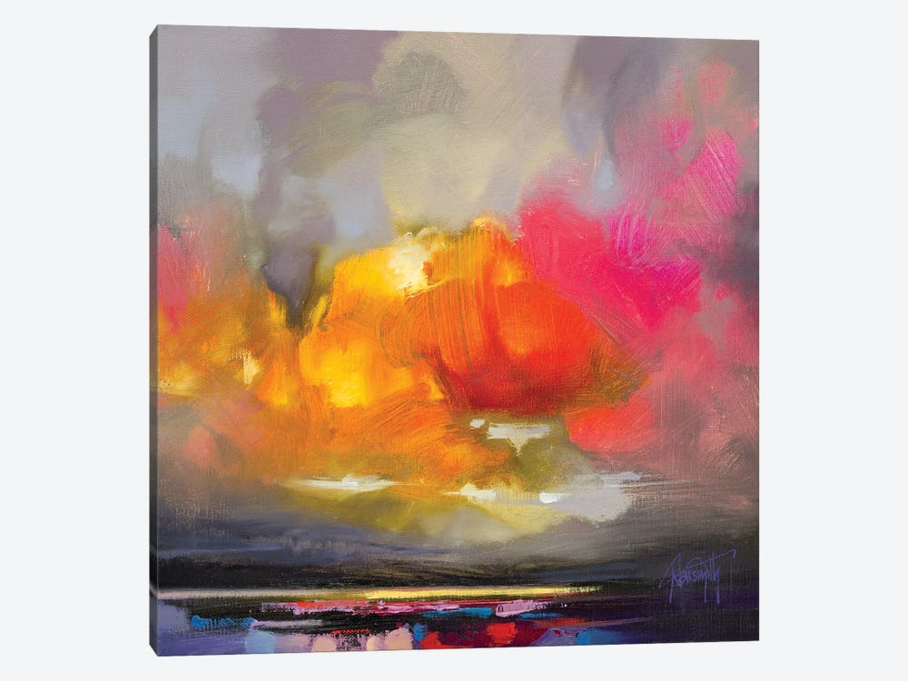 Rose Cumulus Study II by Scott Naismith 1-piece Canvas Artwork