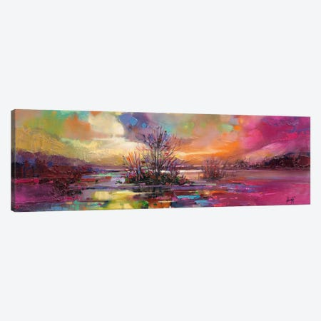 Loch Fyne Colour Canvas Print #SNH11} by Scott Naismith Art Print