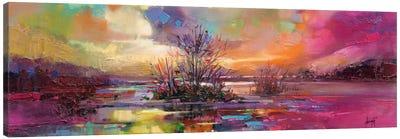 Loch Fyne Colour Canvas Print #SNH11
