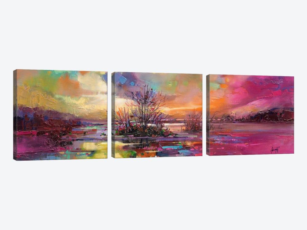 Loch Fyne Colour by Scott Naismith 3-piece Canvas Art