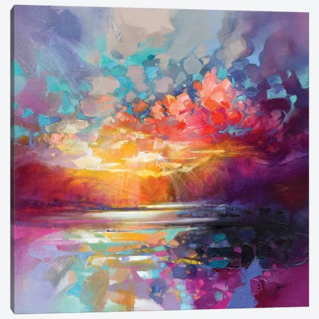 Skye Fragments Canvas Print #SNH120} by Scott Naismith Art Print