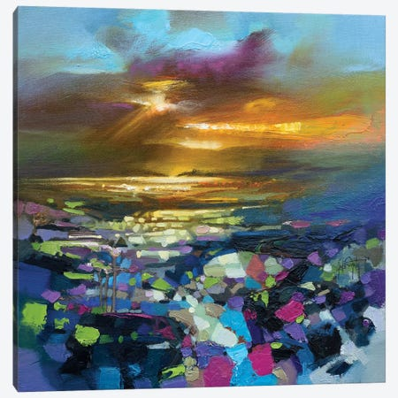 Tectonic Light Canvas Print #SNH121} by Scott Naismith Art Print