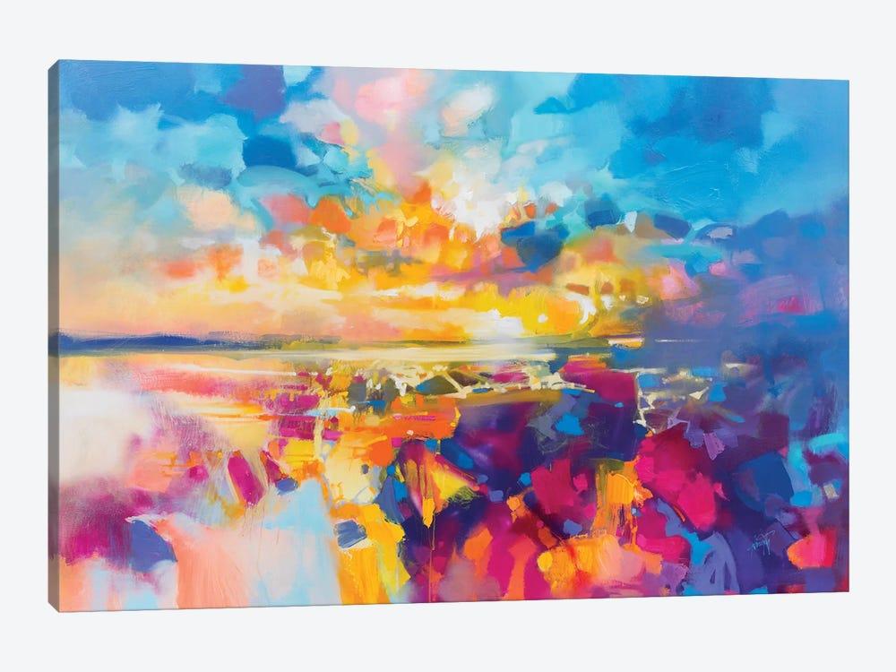 Acoustic Colour I by Scott Naismith 1-piece Canvas Artwork