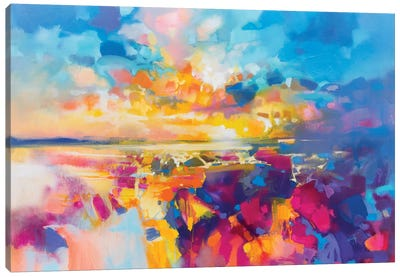 Acoustic Colour I by Scott Naismith Canvas Art Print