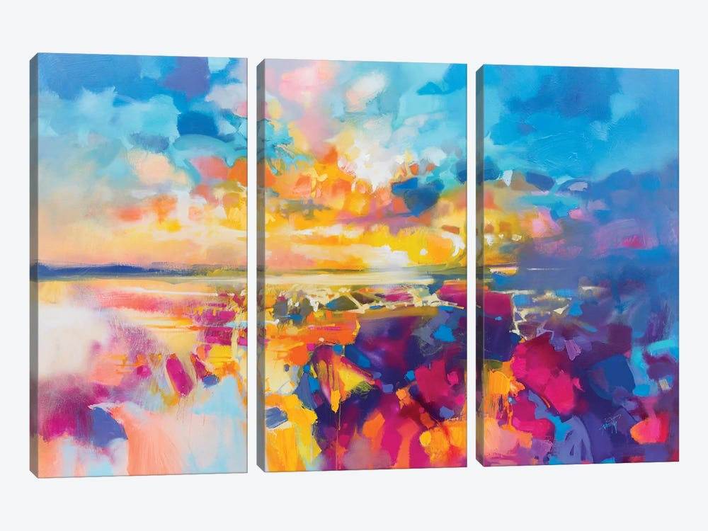 Acoustic Colour I by Scott Naismith 3-piece Canvas Wall Art
